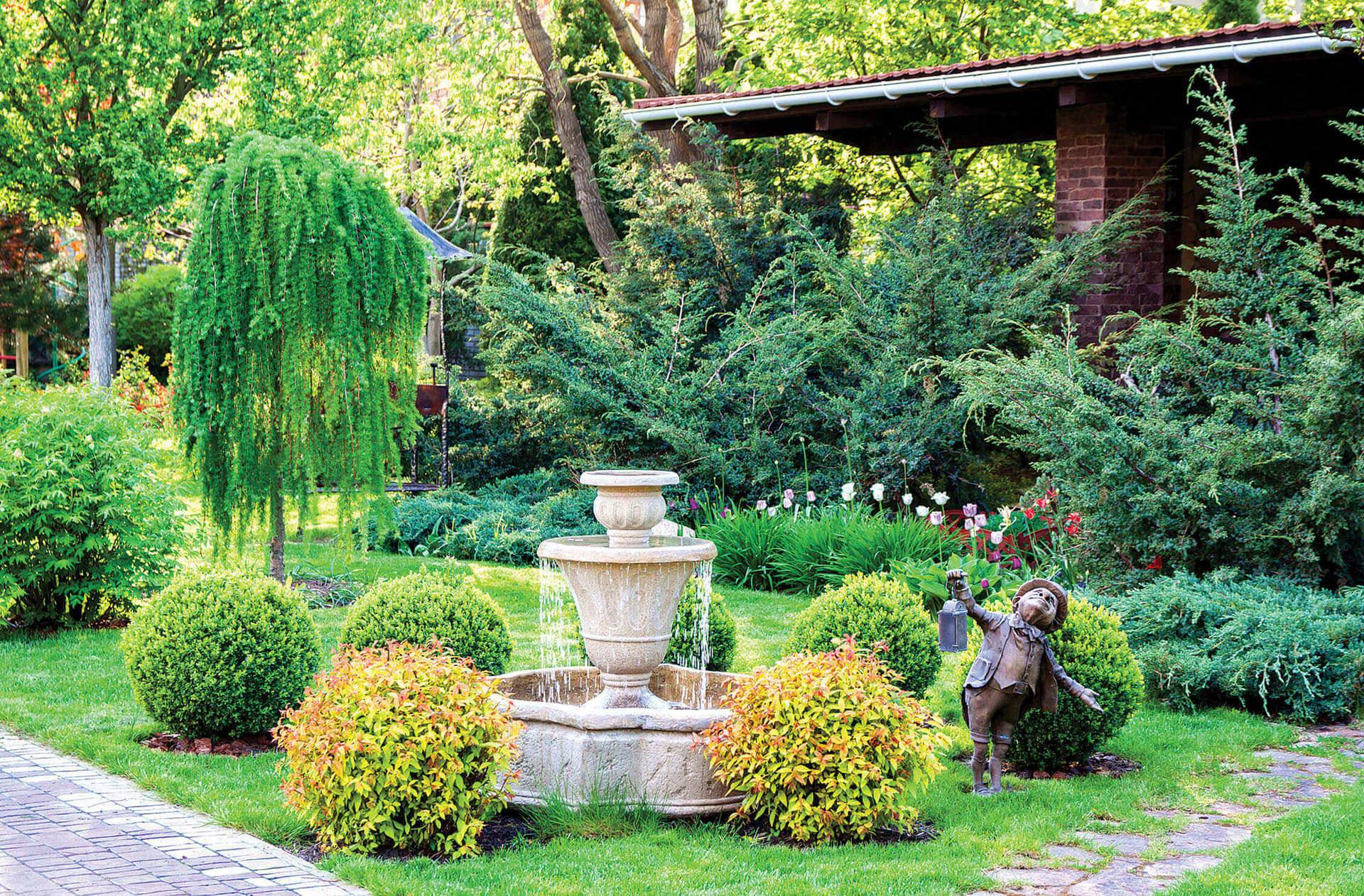 Ива шаровидная — посадка, размножение, уход и особенности выращивания. рекомендации по посадке и советы по применению в ландшафтном дизайне (85 фото)
