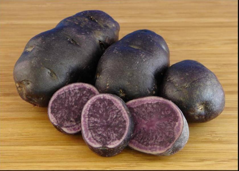 Фиолетовый картофель – описание и особенности сорта, полезные свойства и блюда на ydoo.info
