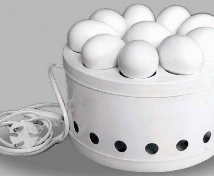 Как пользоваться овоскопом для яиц обзор с видео