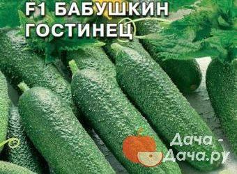 Раннеспелый гибрид огурцов «бабушкин внучок f1»: фото, видео, описание, посадка, характеристика, урожайность, отзывы