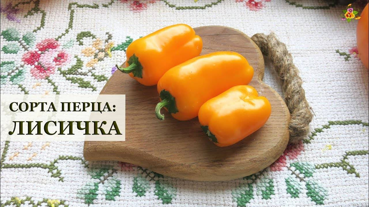 Низкорослые сорта сладкого перца для открытого грунта и теплиц: описание, фото