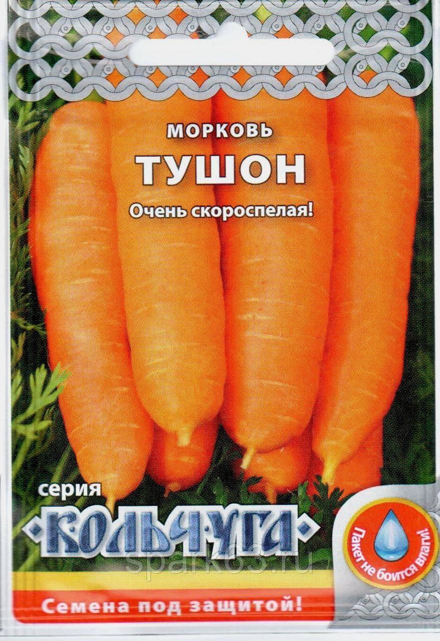 Морковь курода: описание сорта, рекомендации по выращиванию