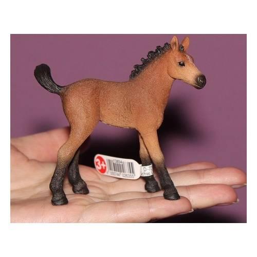 Разведение лошадей в домашних условиях