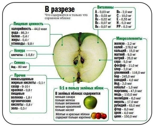 Яблоки гренни смит откуда привозят в россию