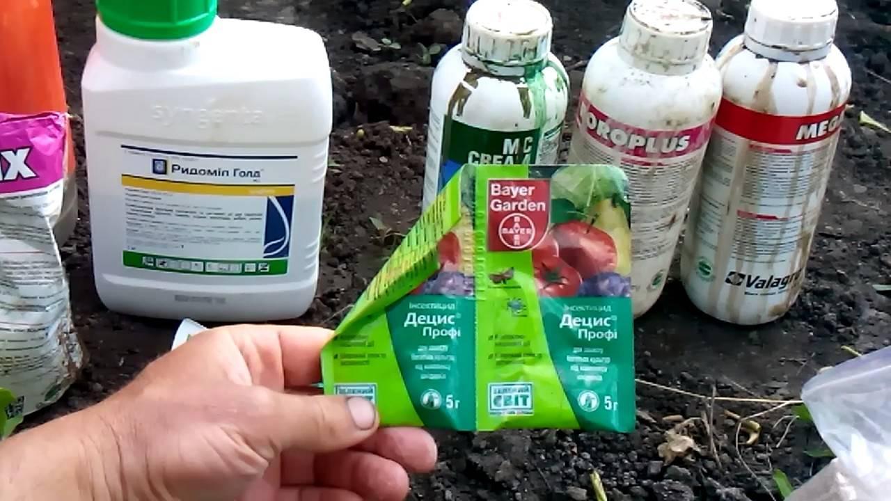Баковые смеси: для защиты растений от болезней и вредителей весной и летом, для обработки роз и винограда в саду, совместимость препаратов