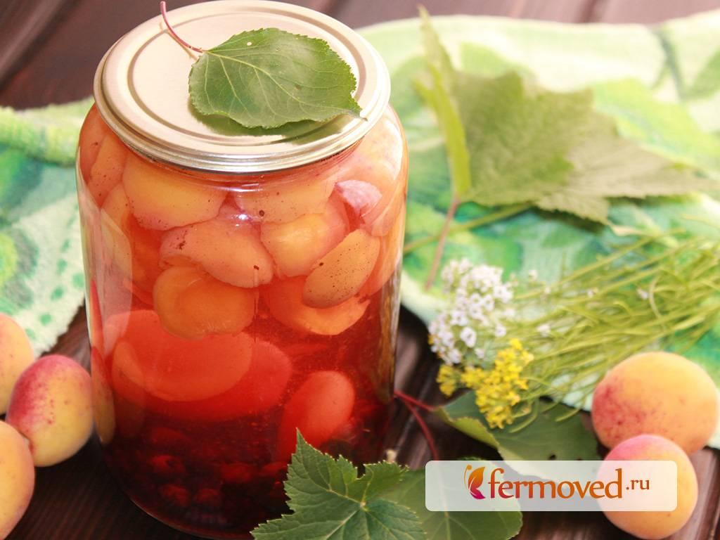 Топ 15 рецептов компота из абрикос с косточками и без на зиму, с сахаром и без
