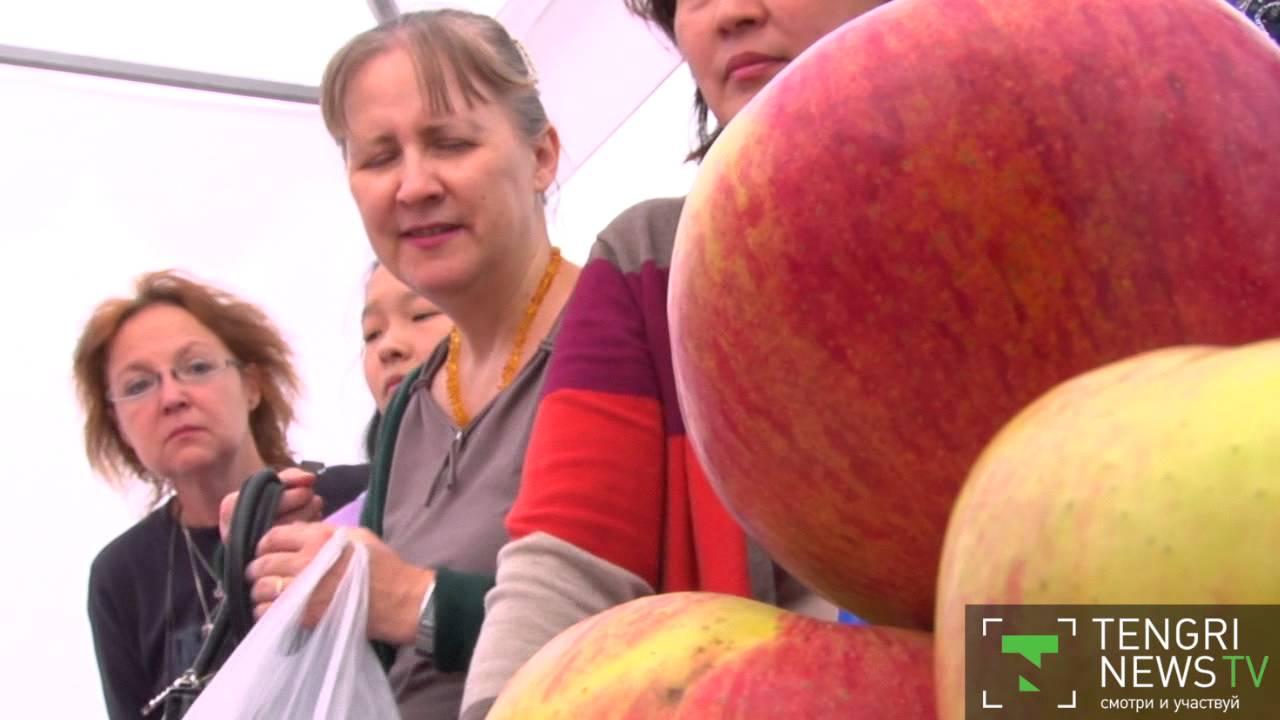 27 интересных фактов о нью-йорке и почему его называют «большое яблоко» • всезнаешь.ру