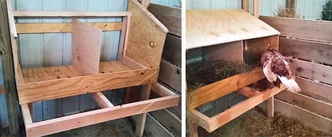 ᐉ гнездо для индюшки своими руками: размеры, инструкции по строительству - zooon.ru