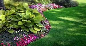 Рулонный газон: как правильно укладывать, ухаживать за ним, фото, видео процесса и полученного результата