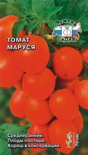 Томат маруся: характеристика и описание сорта, отзывы о нем, фото кустов и помидоров, а также советы по выращиванию