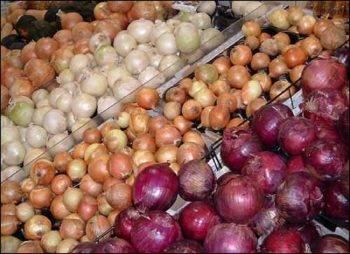 Лучшие сорта лука для открытого грунта в подмосковье: севки репчатого овоща со сладким и иным вкусом для посадки весной и в другое время года, озимые и летние виды