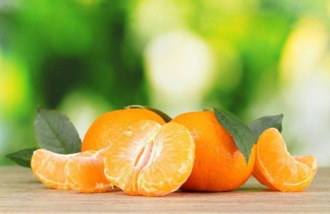 Сонник срывать мандарины с дерева. к чему снится срывать мандарины с дерева видеть во сне - сонник дома солнца