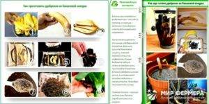 Как использовать банановую кожуру для комнатных растений в качестве удобрения?