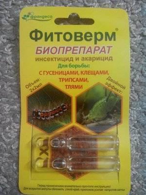 Фитоверм для комнатных растений: как развести и использовать средство, инструкция по применению и обработке цветов, как разводить и как обработать