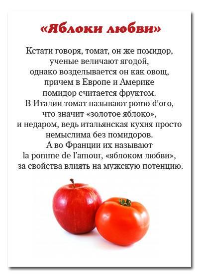 Помидор - это ягода или овощ или фрукт, как правильно?