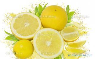 К чему снится лимон? сонник - лимон во сне. что значит, если приснились лимоны.