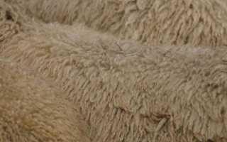 Правила выделки овечьей шкуры, польза материала и уход за овчиной