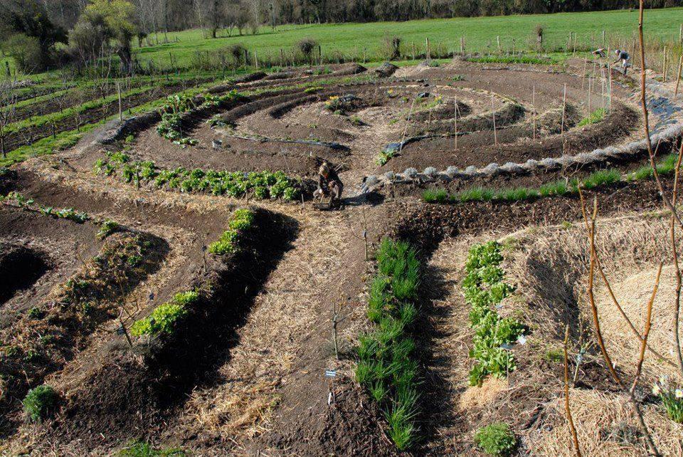 Пермакультура практическое применение для сада огорода - ваша дача