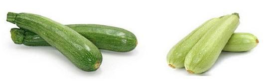 Цукини и кабачки чем отличаются (по вкусу, внешнему виду)