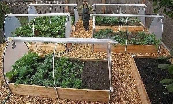 Парник своими руками: для огурцов, помидор, перца, рассады, в огород, на балкон