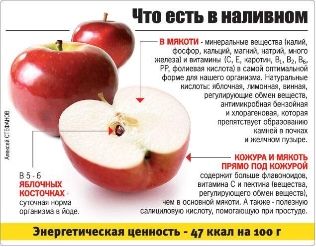 Сушеные яблоки — рецепты приготовления, полезные свойства для здоровья