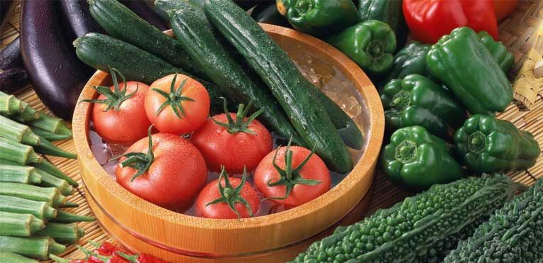 Посадка и советы по выращиванию томатов по методу галины кизимы