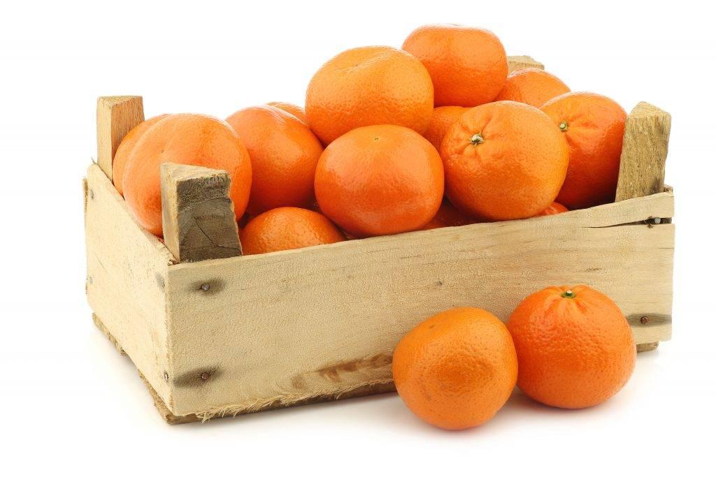 Как впрок хранить мандарины: применим к домашним обывательским условиям