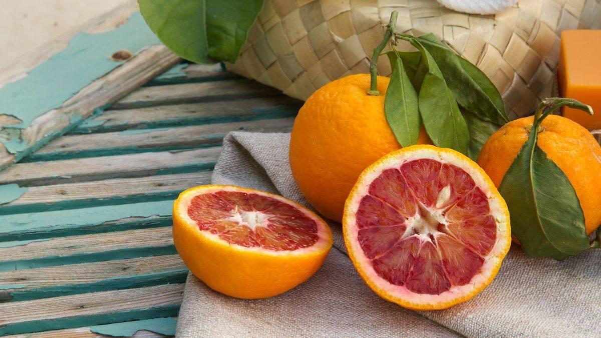 Вкусные и сочные апельсины: поговорим об их пользе и вреде для здоровья